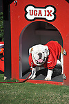 UGA at Ole Miss vs. Georgia at Sanford Stadium in Athens, Ga. on Saturday, November 3, 2012.