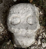 Detail of a skull, Ball Court, Coba Group, Late Classical Period Quintana Roo Mayan site, 600-900 AD, Coba, Mexico. Picture by Manuel Cohen