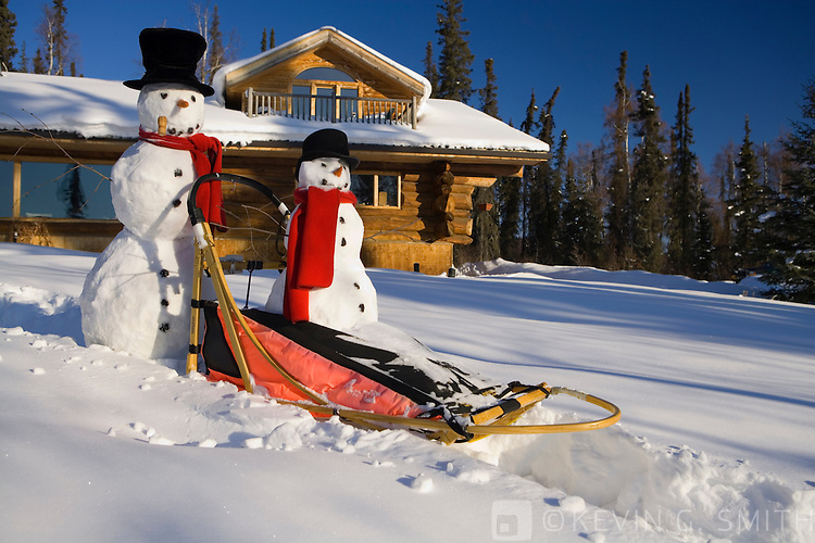 A big and little snowman riding on a dog mushing sled in front of a log cabin style home, early morning sun, blue sky, Fairbanks, Alaska, USA. PR
