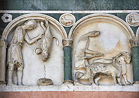 Late medieval relief sculpture depicting the labours for December and November and astrological signs on the Facade of the Cattedrale di San Martino,  Duomo of Lucca, Tunscany, Italy,