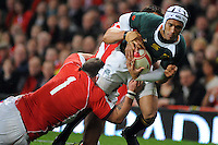 Springboks full back Gio Aplon fails to get past the Welsh defence.