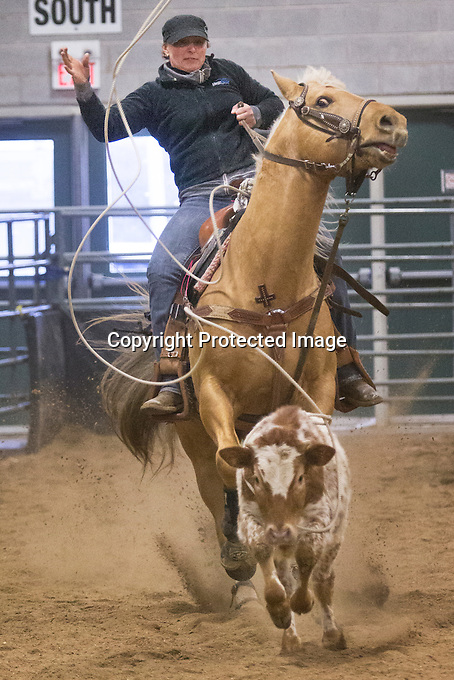 Barrel Racing and Breakaway at the Fairgroundsm in  Orangeville, Ontario, Canada, on Saturday, Feb. 02, 2013..photo: Norm Betts.©2013, norm betts, photographer