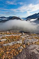 View to the south of the Sargent Ice field, Contact glacier, western Prince William Sound, Chugach National Forest, Kenai mountains, Alaska.