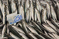 Fresh sardines in Sandakan market, Sabah, Borneo