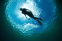 Silhouette of a snorkeler<br /> St John<br /> U.S. Virgin Islands