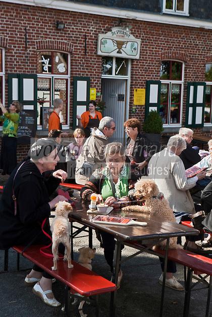 Europe/France/Nord-Pas-de-Calais/59/Nord/Boeschepe: A la terrasse de l' Estaminet : De Vierpot   sous les pales du moulin de l'Ondankmeulen