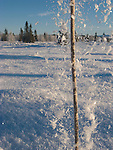 Flying ice from a stick