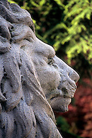 Court House Lions, at the North Portico of Vancouver Art Gallery, John Bruce 1910