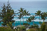 Haleiwa Hawaii,(Sunday November 14, 2010) .Photo: joliphotos.com