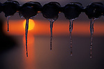 Icicles on chain link fence at sunset over Puget Sound, backlit from West Seattle Park, Seattle, Washington State USA.