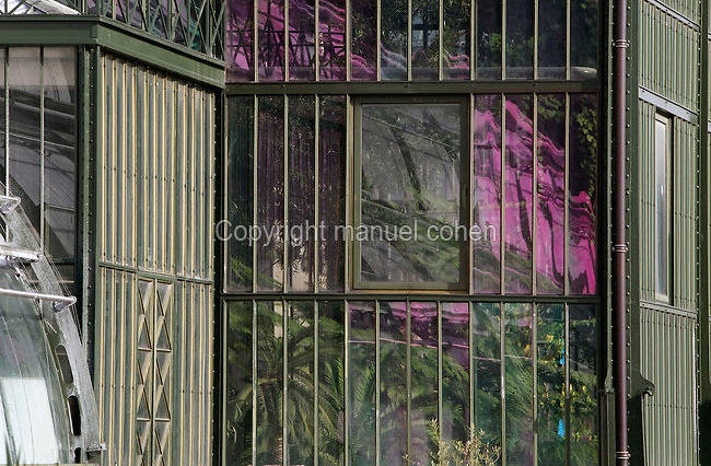 Plant History Glasshouse (formerly Australian Glasshouse), 1834, Charles Rohault de Fleury, Jardin des Plantes, Museum d'Histoire Naturelle, Paris, France. Detail of a corner in the glass and metal structure with diamond-shaped decorations and a small window, the incubators (on the left of the picture) being reflected in the glass structure by the midday winter light.