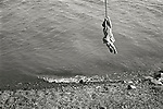 Kirstin swinging on rope over Lake Skaneateles. Age 4. File#73-145-D14