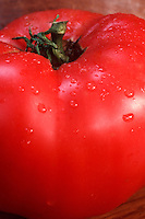Red tomato big beef beefsteak tomatoes big Boy, indeterminate hybrid favorite variety . Famous hybrid tomato developed by Dr. Oved Shifriss, a plant breeder and geneticist,who developed the famous hybrid for the Burpee seed company -- W. Atlee Burpee & Co. -- in 1949