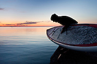 A stand up paddleboard paddler checks water depth before tossing his board into Lake Superior off the breakwater at Grand Marais Michigan.