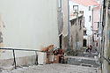 Lisbon, Portugal. 15.04.2016. Narrow Steps in Alfama, Lisbon. Photograph © Jane Hobson.