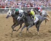 Belmont Stakes Day 2016