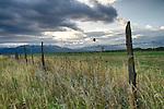 Idaho, Eastern, Driggs, Teton Valley. The Teton Range under stormy skies on a late summer morning.