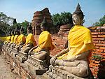 Receeding Line of Buddhas-Wat Yai Chaya Mongkol-Ayattha
