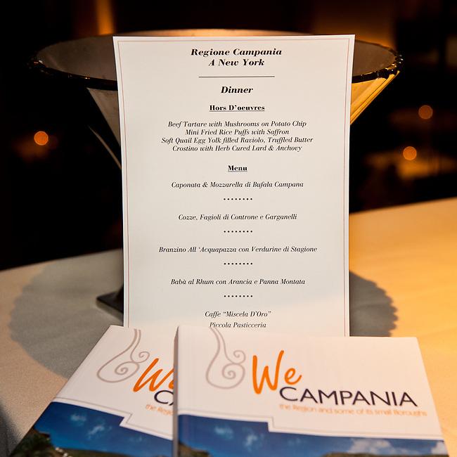 We Campania presentation at SD26. New York City.