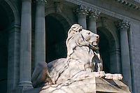 Lion, New York Public Library, architect, Carrere & Hastings , 5th Avenue, Manhattan, New York City, New York, USA