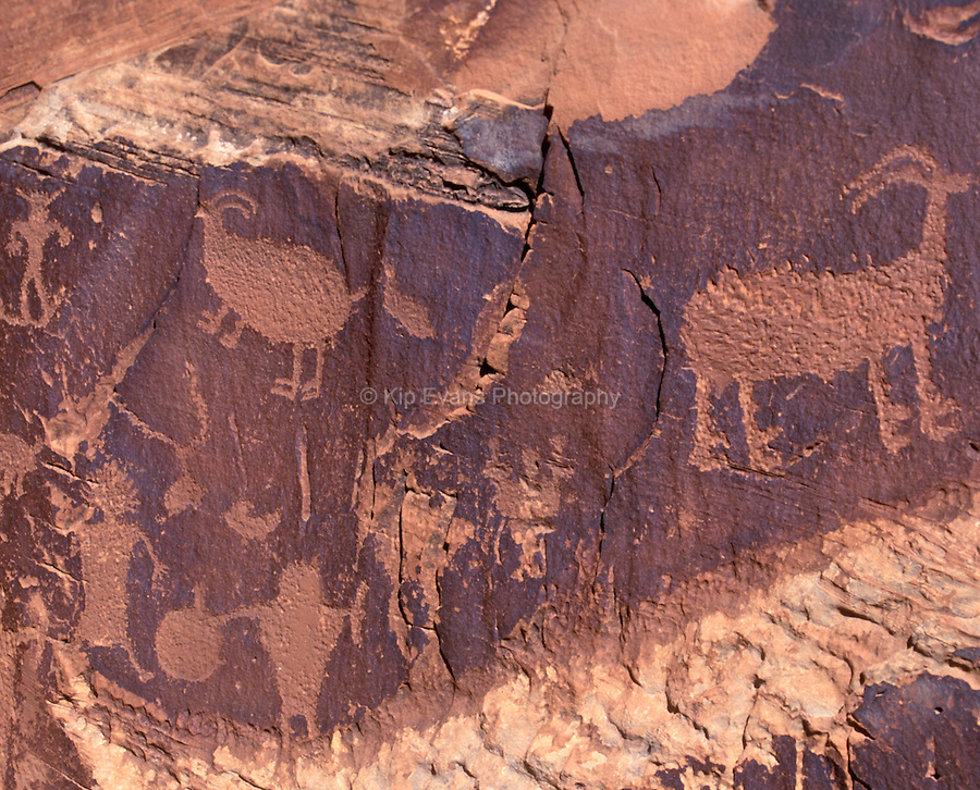 Petroglyphs on a wall in Canyon de Chelly National Monument, Arizona.