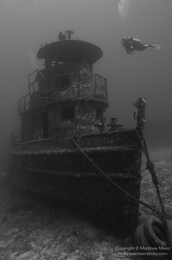 Grand Bahama Island, The Bahamas; a scuba diver hovers over the bow of La Rose Wreck, this 50 foot, triple decker tugboat was intentionally sank in 2006 as an artificial reef by UNEXSO and sits upright in 95 feet of water