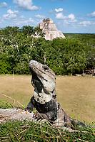 The Mayan city of Uxmal, Yucatan, Mexico
