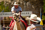 Caesar Boswell, of Salt Lake City, races at the 51st annual International Camel Races in Virginia City, Nevada  September 12, 2010. .CREDIT: Max Whittaker for The Wall Street Journal.CAMEL