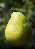 Pear, pera. Fruta, fruit.