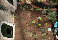 New Caledonia Glasshouse (formerly The Mexican Hothouse), 1830s, Charles Rohault de Fleury, Jardin des Plantes, Museum National d'Histoire Naturelle, Paris, France.  View from above of the interior of the glasshouse showing the newly planted Glasshouse which is divided into areas representing the four forest climates. Here we see the savannah section. The New Caledonia Glasshouse, or Hothouse, was the first French glass and iron building.