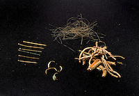 SAVEOCK WATER, CORNWALL, ENGLAND - AUGUST 03: A detail of archaeological finds on August 3, 2008 in Saveock Water, Cornwall, England. 6 brass pins with soldered separate heads, including one with a gold head, human hair, fingernail pairings and heather stalks, from the late Medieval period, were found by archaeologist Jacqui Wood in a votive pool cut into a Neolithic spring pool. (Photo by Manuel Cohen)