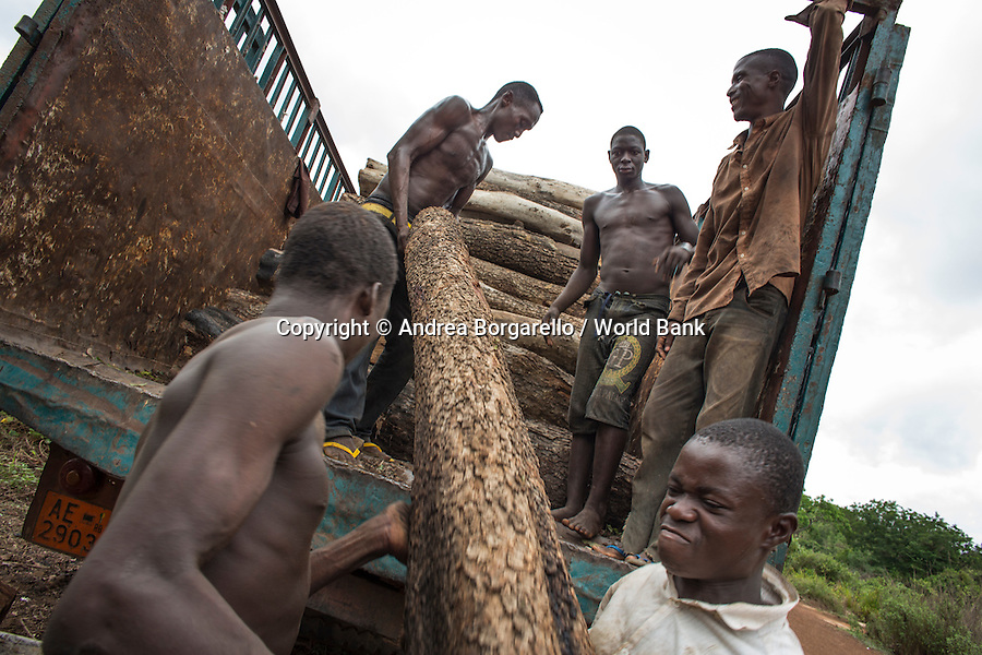 Trees are cut down to sell the wood and coal. These are mainly subsistence activities. Benin.