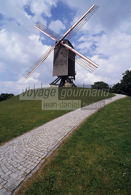 Europe/Belgique/Flandre/Flandre Occidentale/Bruges : Moulin à vent