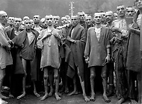 Starved prisoners, nearly dead from hunger, pose in concentration camp in Ebensee, Austria.  The camp was reputedly used for &quot;scientific&quot; experiments.  It was liberated by the 80th Division.  May 7, 1945.  Lt. A. E. Samuelson.  (Army)<br /> NARA FILE #:  111-SC-204480<br /> WAR &amp; CONFLICT BOOK #:  1103