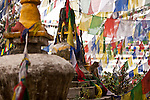 A Macaque monkey posing among a curtain of prayer flags at Swayambunath one of the oldest and most holy religious sites in Kathmandu.