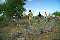 KLASERIE PRIVATE GAME RESERVE, SOUTH AFRICA, DECEMBER 2004. In single file we follow Gary while looking for big game. Wildlife guide Gary Freeman takes people on walking safaris in the bush. Photo by Frits Meyst/Adventure4ever.com