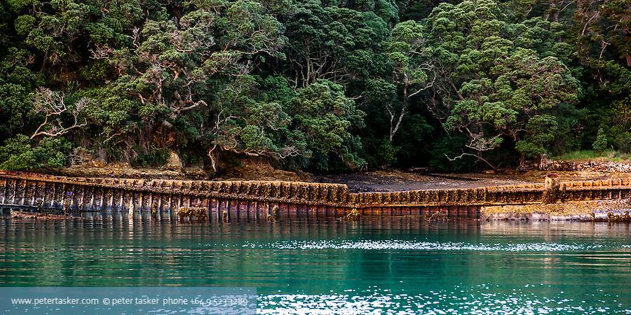 The rusty hull of Charlie Hansons' Rewa lying in Shipwreck Bay, Moturekareka Island, Hauraki Gulf, New Zealand.