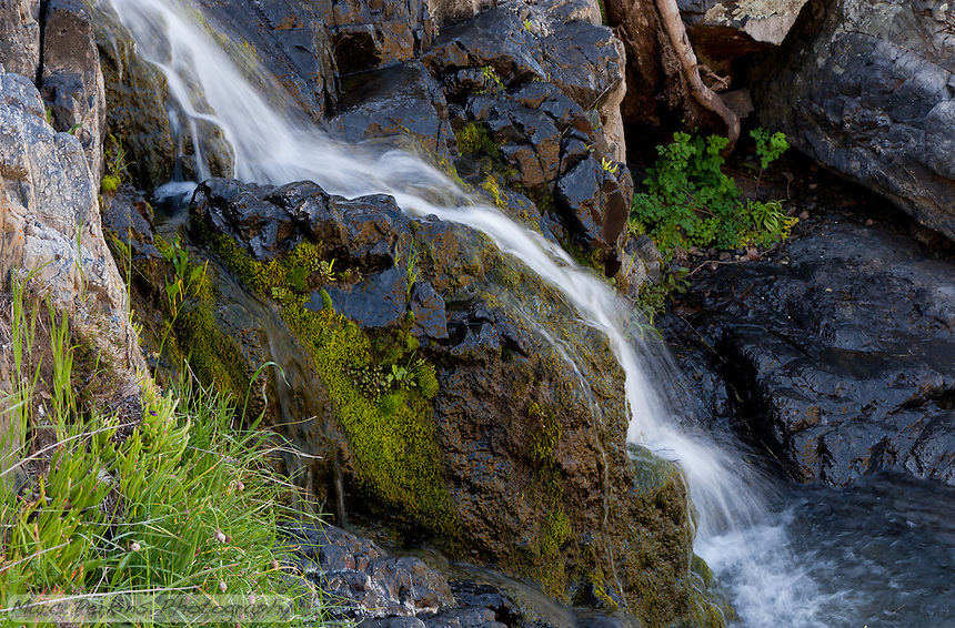 Water cascades down over moss covered rocks into a small pool.  From Greg's and my hike in Upper Hot Spring Canyon in the Cleveland National Forest.