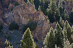 Pine trees growing around the sharp rocky ridges along the Skalkaho Highway in Montana