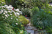 Edibles and perennials are mixed in this sideyard garden in Toronto, Canada.