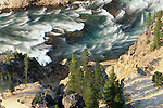 Yellowstone River surges through the Grand Canyon of the Yellowstone, Yellowstone National Park, Wyoming, USA