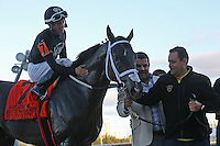 HALLANDALE BEACH, FL - FEBRUARY 11: Sharp Azteca (KY) #7 with jockey Edgar Zayas before going to the winners circle after winning the Hardacre Mile Gulfstream Park Handicap GII at Gulfstream Park on February 11, 2017 in Hallandale Beach, Florida. (Photo by Liz Lamont/Eclipse Sportswire/Getty Images)