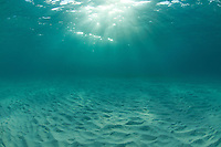 Water and light in the Caribbean Sea<br />