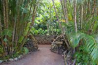 Recreated chief's assembly house at Kamokila Hawaiian Village, Wailua River Valley, Kauai.