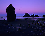 Cape Sebastian State Park Southern Oregon Coast along Highway 101 at sunrise low tide with beach drift wood and rock formations with moon setting in pinkish sky Oregon State USA
