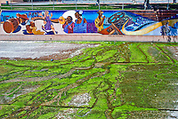 Great Wall, Mural, Los Angeles, Tujunga Wash, sub watershed, San Fernando, Valley, CA, California, City, of, Los Angeles, Department,, Recreation Parks,
