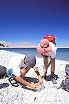 Paco Pinero & Lee Hallman Making Traps
