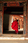 Asia, Bhutan, Wangdue. Monk at Wangdue Phodrang Dzong.