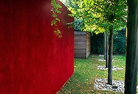 Red Venetian plaster wall  flanks the pleached Hornbeams along the back perimeter garden wall.