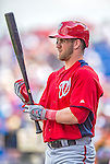 23 February 2013: Washington Nationals outfielder Bryce Harper awaits the start of play prior to a Spring Training Game against the New York Mets at Tradition Field in Port St. Lucie, Florida. The Mets defeated the Nationals 5-3 in their Grapefruit League Opening Day game. Mandatory Credit: Ed Wolfstein Photo *** RAW (NEF) Image File Available ***